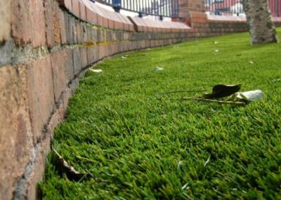 grass+close